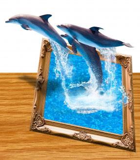 Immagine con delfini che escono da quadro.